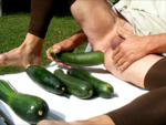 courgettes01.png